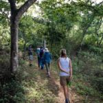 Walking and hiking trails take place at Shongweni Dam and Nature Reserve