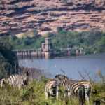 Wildlife overlooks the dam at Walking and hiking trails take place at Shongweni Dam and Nature Reserve